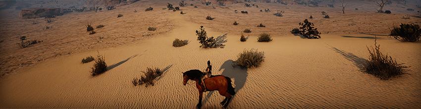 거대한 사막으로의 출정